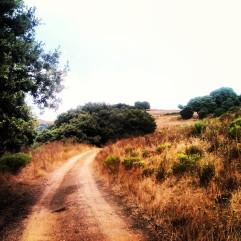 Chemin des crêtes Alata