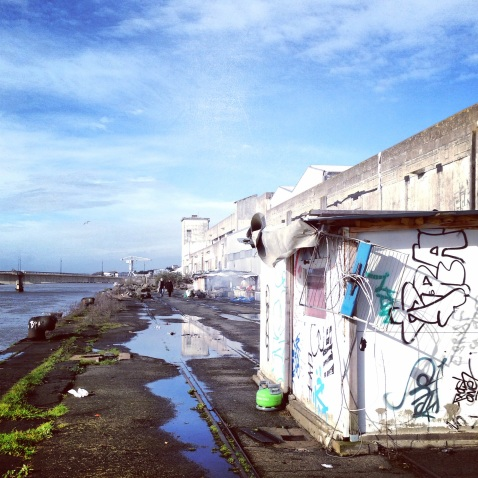 Bords de Loire Nantes derrière les usines Beghin Say